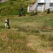 Dias Toffoli diz que Cotia pode continuar pagando auxílio emergencial de desemprego